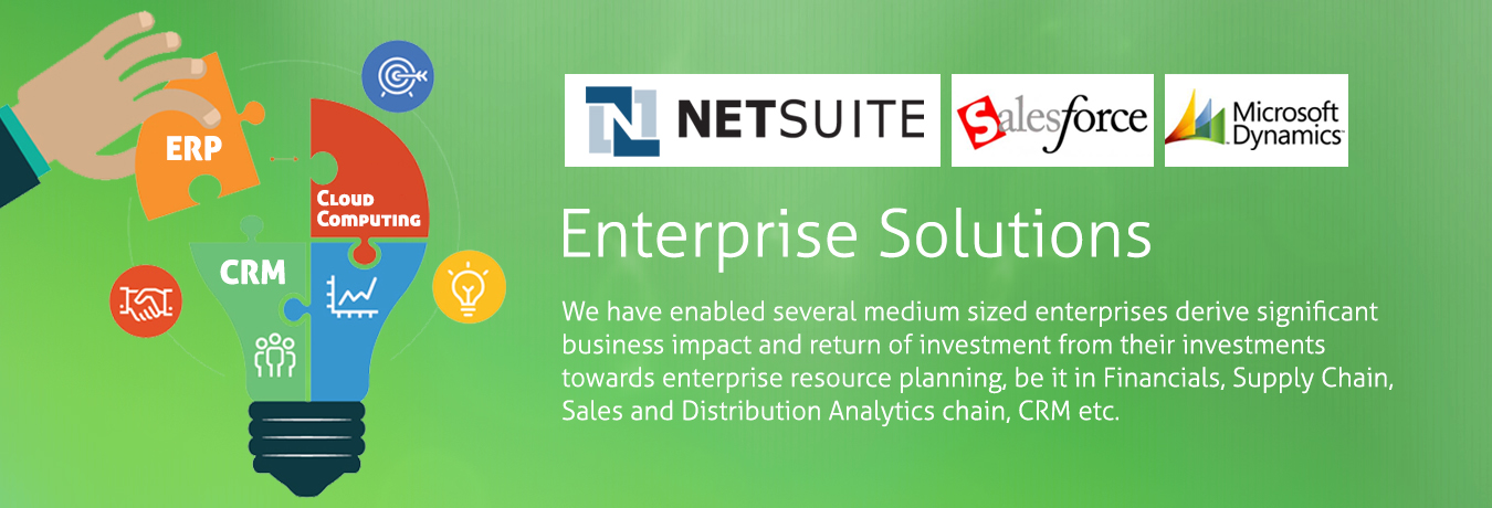 Netsuite, Salesforce, Dynamics, ERP solutions, AX, GP